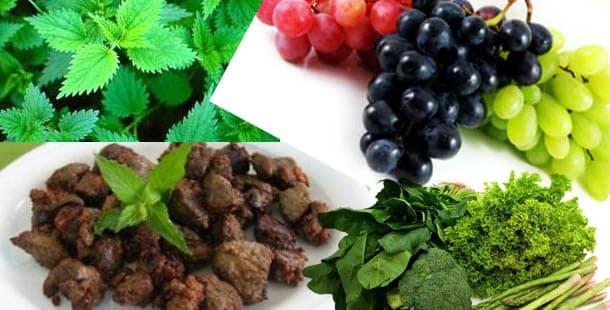 Kansızlığa Anemiye iyi gelen yiyecekler bitkiler meyveler