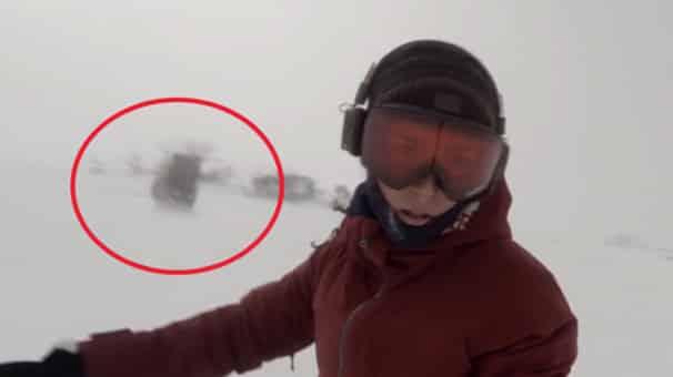 Peşindeki Ayıyı Farketmeden Snowboard Yapan Kadın
