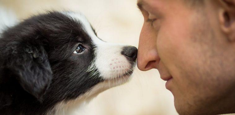 'Hayvanları Seviyorum, İnsanları Sevmiyorum'