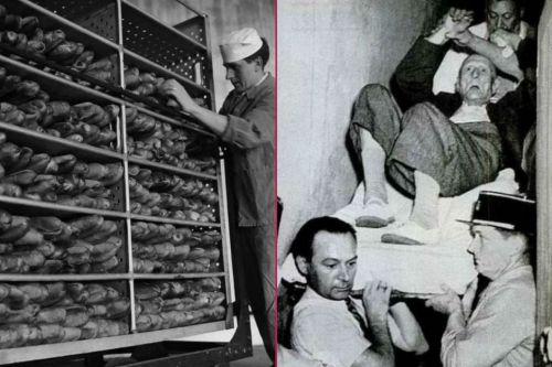 Lanetli Ekmek Olayı 4