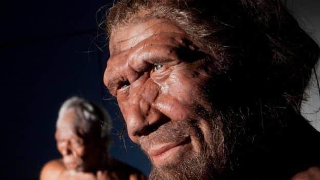 Neandertallerin Neden Yok Olduğu Ortaya Çıktı