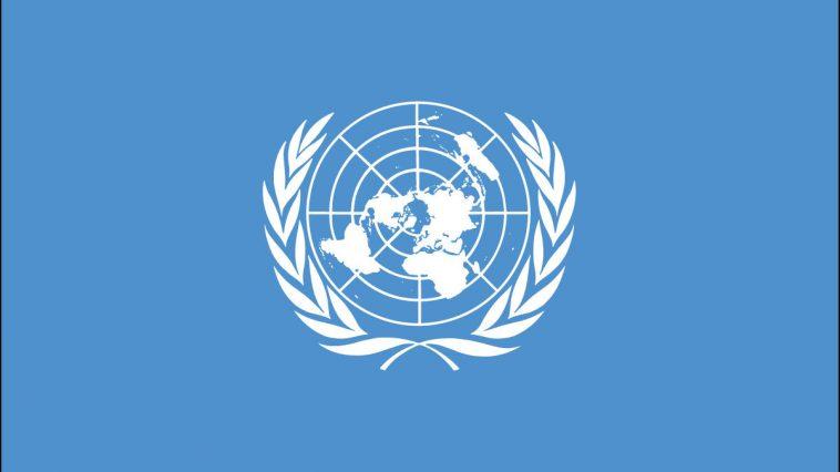 Birleşmiş Milletler: Türkiye, Ürdün ve BAE Libya Yaptırımlarını İhlal Ediyor!