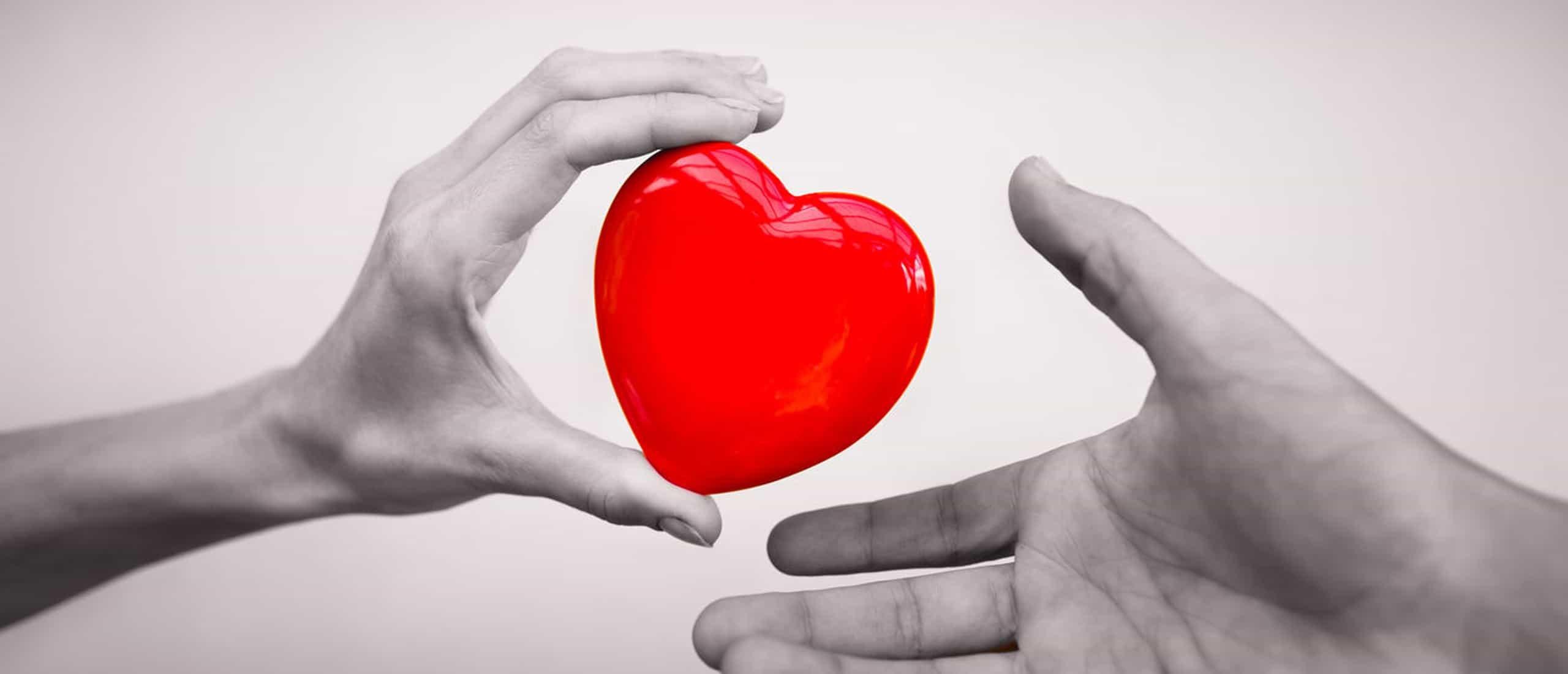 Organ Nakli Olmadan Önce Dışarıda Ne Kadar Bekletilebilir?