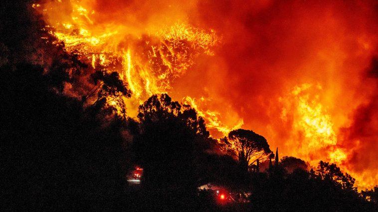 Her Yıl 9 Milyon İnsan Sıcak Maddeler, Ateş Gibi Nedenlerden Yaralanıyor