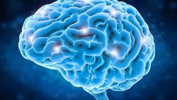 Sol Beyinli Misiniz, Sağ Beyinli Misiniz?