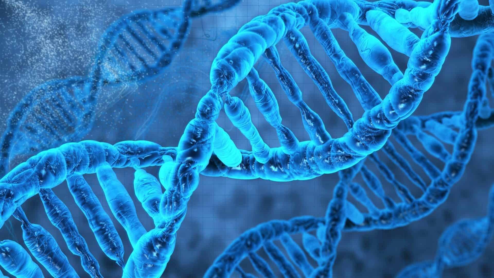 İnsan Vücudu Kendini 7 Yılda Bir Yeniler Mi?