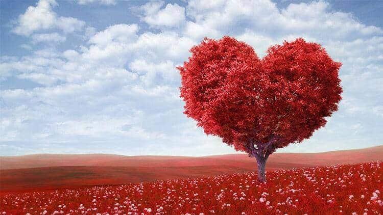 Sevgililer Günü'ne Sevgiliyle Mi Gireceksin, Sevgilisiz Mi?
