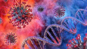Corona Virüsünü Ne Kadar İyi Tanıyorsun?