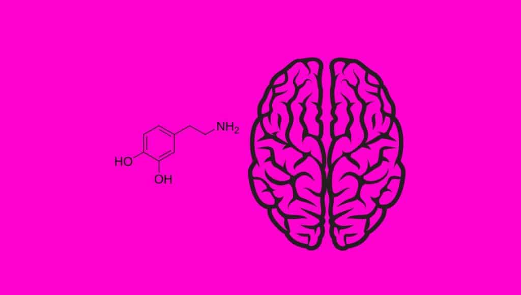 Dopamin Nedir? – Nasıl Arttırılır?