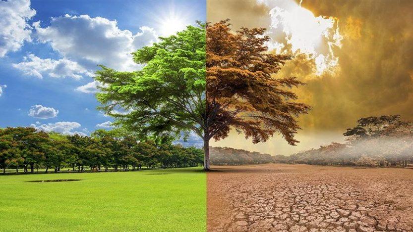 Gezegenimizi Yok Ediyoruz! Küresel Isınmanın Etkileri