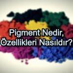 Pigment Nedir, Özellikleri Nasıldır?