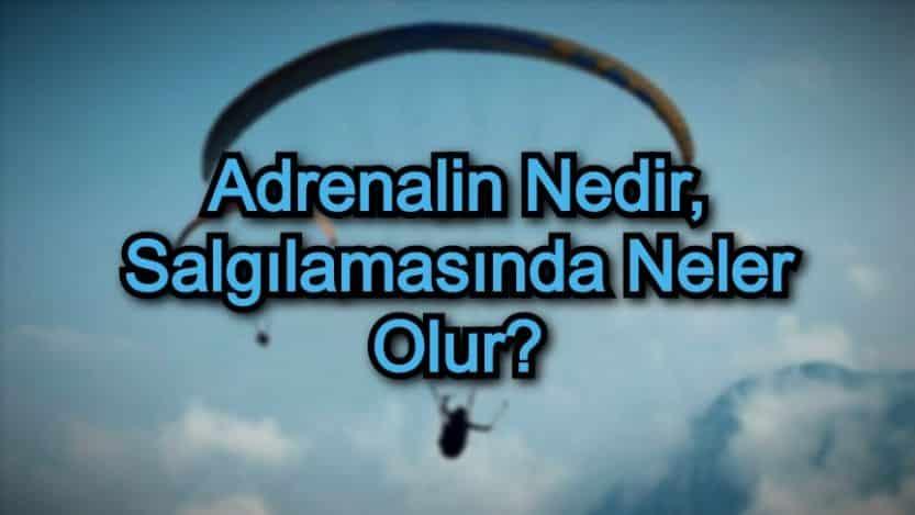 Adrenalin Nedir, Salgılamasında Neler Olur?