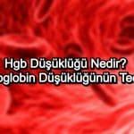 Hgb Düşüklüğü Nedir? Hemoglobin Düşüklüğünün Tedavisi