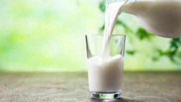 En İyi Süt Markaları