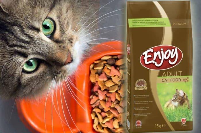 enjoy cat food